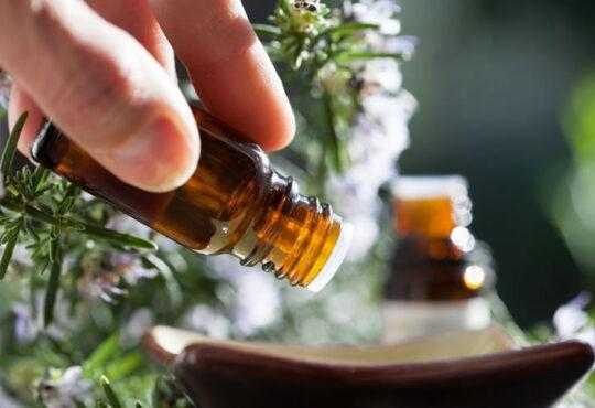 Quais são os óleos anti-inflamatórios